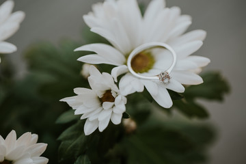 Diamond wedding or engagement ring on a daisy