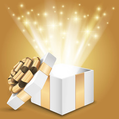 Gift box with shining light Vector
