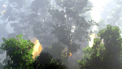 Disaster with fire in the forest 3d rendering