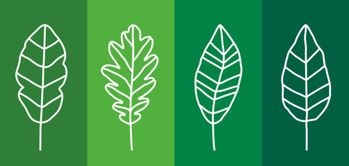 Leaf Line Icon Set, Flat, Lines, Vector