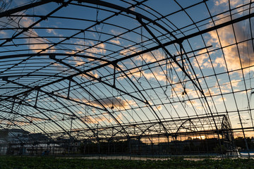 Old greenhouse structure at the sunset in Japanese village rural area