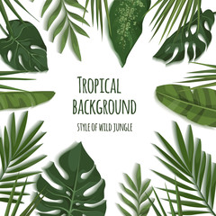 Vector frame of tropical leaves. Trendy summer tropical concept. Style of wild jungle. Background for the design of invitations, greeting cards etc.