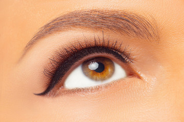 Macro Shot of Young European Woman's Beautiful Eye. Elegance CloseUp of Female Eye with Classic MakeUp and Liner. Beauty, Cosmetics and Makeup. Brown Eyeshadow on Eyelid