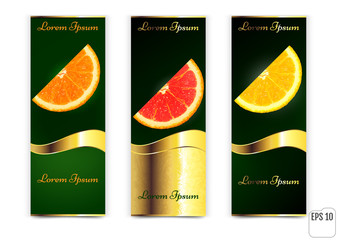 Three banners with oranges and lemon on a white background. vector