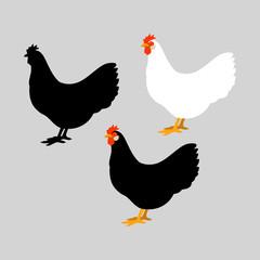 set chicken vector illustration style Flat set silhouette black