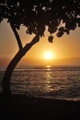 Sonnenuntergang Maui 3