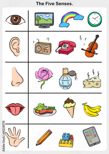 162261715 on Science Of Smell Worksheet