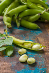 Healthy fresh legumes, new harvest of broad lima white beans
