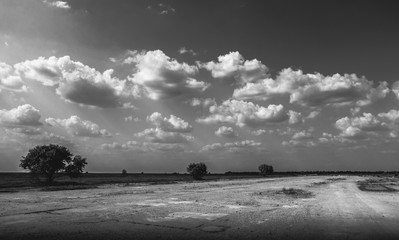 Landscape on the runway in the field - black and white