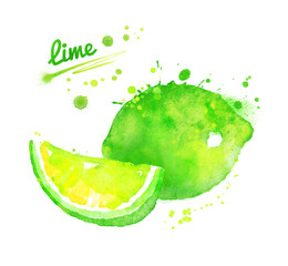 Hand drawn watercolor illustration of lime