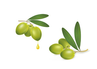 set of green olives on white background