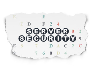 Security concept: Server Security on Torn Paper background