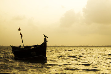 A Silhouette of a boat and a crow.