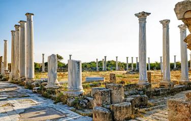 Poster Ruins Salamis ruins , Cyprus