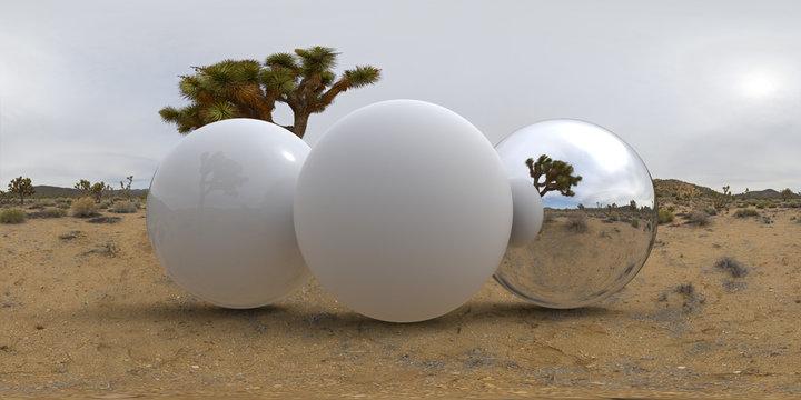 Joshua Desert Tree