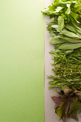 Fresh spicy herbs on a gray-green pastel background..