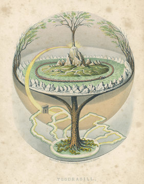 Yggdrasil  the Tree of Life in Norse mythology. Date: 1847