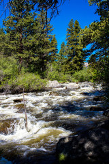 Water from snow melt surges through Mill Creek in June in Rocky Mountain National Park in Colorado