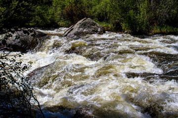 Snow melt surges through Mill Creek in June in Rocky Mountain National Park