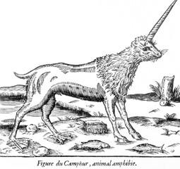 Folklore - Unicorns. Date: circa 1570