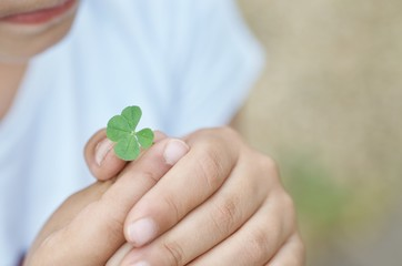 Four-leaf clover and hands of children
