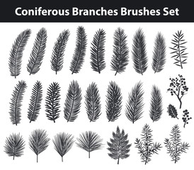 Collection of Evegreen coniferous trees branches silhouettes Brushes in black color for your christmas, winter, seasonal designs. included in brush library.