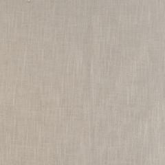 Calliope Ivory Texture