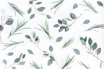 Flowers composition. Pattern made of carnation flowers and eucalyptus branches on white background. Flat lay, top view
