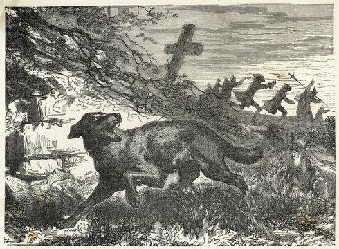 Folklore - Werewolves. Date: 19th century