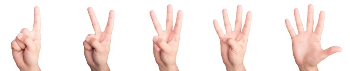 Hands. Numbers concept