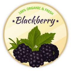 Vintage label with blackberry isolated on white background in cartoon style. Vector illustration. Fruit and Vegetables Collection.