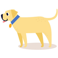 Cute cartoon golden retriever in a blue collar isolated on white background. Simple modern flat style vector illustration.