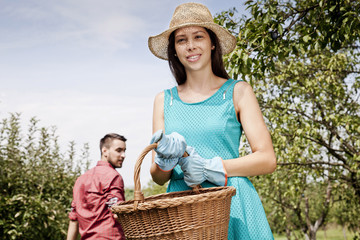 Young couple harvesting in vegetable garden