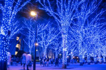Illuminated street at Yoyogi Park in Tokyo 青の洞窟