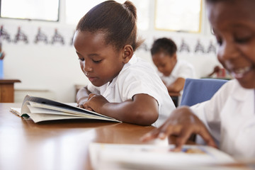 Elementary school girl reading a book at her desk in class