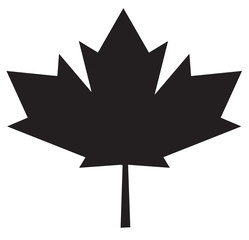 maple leaf icon on white background. maple leaf sign.