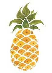 Pineapple. Watercolor illustration.