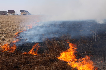 Burning grass / fire on the field near houses.