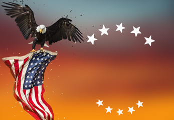 Wall Mural - Bald Eagle with American flag