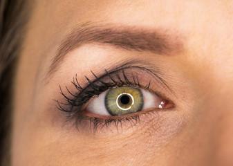 Beautiful female green eye close-up