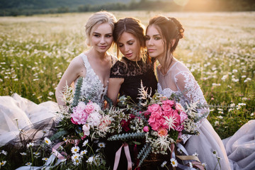 three beautiful girls brunette and blonde,brown-haired woman enjoying Daisy field,nice long dresses, pretty girl relaxing outdoor, having fun, happy young lady and Spring green nature, harmony concept
