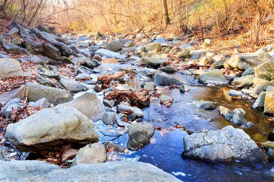 Minnehaha Stream - Bethesda, Maryland