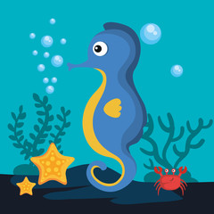 Sea life design with seahorse, crab and starfish vector illustration