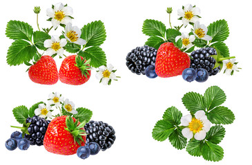 strawberry,blackberry, bilberry, blueberries isolated on white