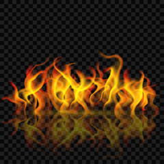 Fire flame with reflection. Transparency only in vector format