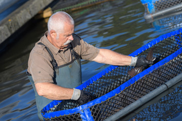 senior man working at a farm of floating basket