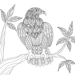 Zendoodle design of Eagle sitting on branch for adult coloring book page. Vector illustration