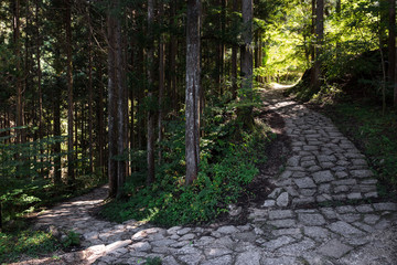 Nature trail antient pilgrimage route from village Magome to Tsumago in the Japanese forest