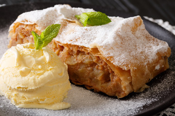 Austrian traditional apple strudel with ice cream and mint closeup. Horizontal