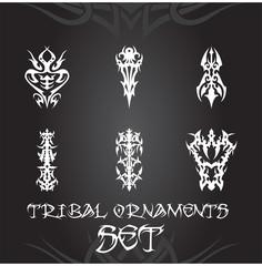 Tribal ornaments and design elements